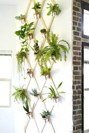 wood and leather trellis plant wall indoor diy