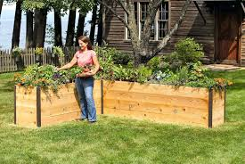 cedar raised garden beds diy new cedar wood for garden beds 4 4 raised bed