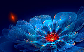 cool flower wallpapers page 1