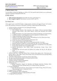Mobile Testing Resume Resume Templates
