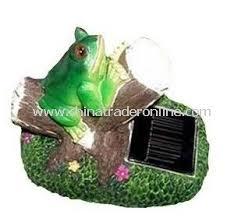Polyresin Solar Animalsfrogturtlesnailowlladybirdstones Solar Frog Lights