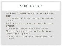 requirements and expectations the kite runner literary essay  introduction hook  an interesting sentence that begins your essay should introduce your topic and