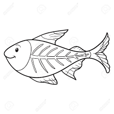 43 Fish Color Pages Fish Coloring Pages Team Colors Radiokotha Com