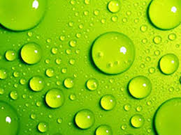 Green Wallpapers 50 Fresh Hd Wallpapers