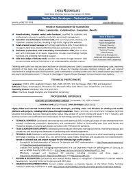 Ssrs Developer Resume Sample Sample Resume For Experienced Net DeveloperIT Developer Resume 9