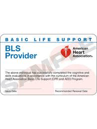 aha bls provider course pletion card 24 pack