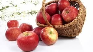 Bilderesultat for eple