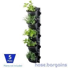 green wall hanging planter box herb