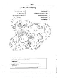 Venn Diagram Plants Labeling An Animal Cell Worksheet Luxury Plant Coloring Sheet Clip