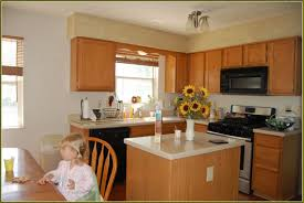 Home Depot Kitchen Home Depot Cabinets Kitchen Home Design Ideas