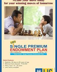 beautiful single premium life insurance quotes entrancing single