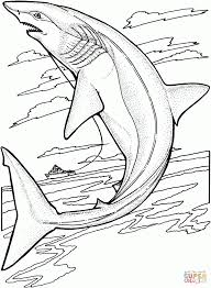 Small Picture Coloring Pages Sharks