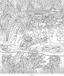 Small Picture 7006 best Coloring Pages images on Pinterest Coloring books