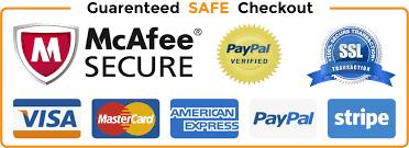 Αποτέλεσμα εικόνας για safe payment icon