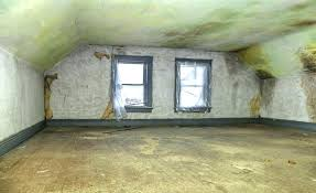 mold inside walls removing mold from walls 5 safe methods to properly remove mold get rid of mold inside mold growing on walls dangerous