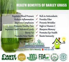 health benefits of barley gr barleynutrition barley health benefits barley nutrition cheese nutrition