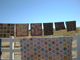 Quilty Folk: A Few Buggy Barn Quilt Show Pictures & It really is a beautiful setting to display quilts. Adamdwight.com