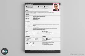 Resume Template Online Free Cv Professional Cv Template 23