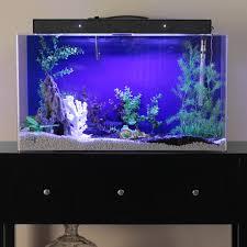 Fish Tank Clear For Life Rectangle Aquarium Hayneedle