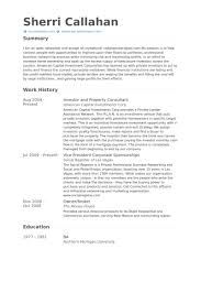 Property Consultant Resume samples - VisualCV resume samples database