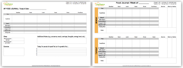 free food journal template excel food tracker expin franklinfire co