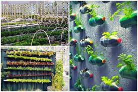 Small Picture Researching DIY vertical garden ideas that actually look good