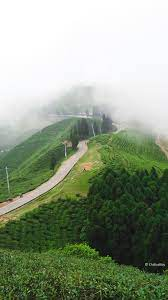 Illam Nepal Nature Landscape 4k Ultra ...