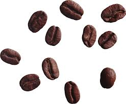 coffee beans png.  Png Coffee Beans PNG Image  PurePNG  Free Transparent CC0 Library Inside Png A