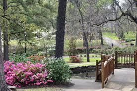 tyler texas rose garden springtime bliss
