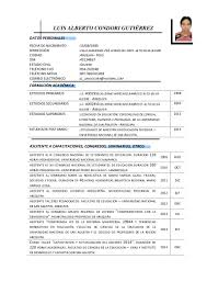 Modelo De Curriculo Vitae Area Educacion