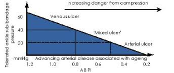 Abpi Calculation Chart Doppler Assessment And Abpi Interpretation In The
