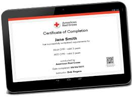 Free Online Babysitting Certification Babysitting Child Care Certification Red Cross