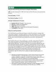 Executive Summary Sample For Proposal Sample Proposal Executive Summary Tryprodermagenix Org