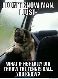 Introspective Pug | Know Your Meme via Relatably.com