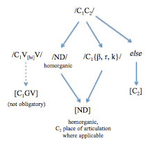File Flow Chart Of Consonant Cluster Phonotactics Png