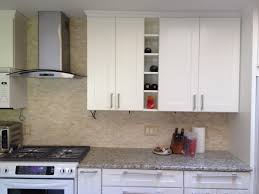 Shaker Style Kitchen The Doorlemma Shaker Style Vs Raised Panel Premium Cabinets