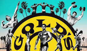 steroids and arnold the story of the gym that shaped america