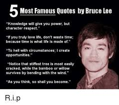 Most Famous Quotes Adorable Most Famous Quotes By Bruce Lee Knowledge Will Give You Power But