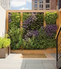 Small Picture Wall gardens