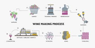 Sula Wines Making Process Wine Production Process