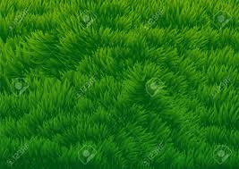 grassy field background. Abstract Background Of Green Grassy Field - Vector Illustration  Stock 88283271 Grassy Field Background