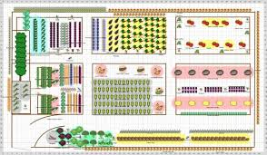 Small Picture Raised bed vegetable garden layout plans