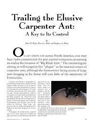 Trailing the Elusive Carpenter Ant: