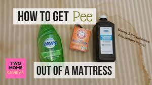 How to Get Pee Out of a Mattress in 5 Easy Steps!!! Over 130,000 ...