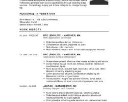 100 Free Job Resume Maker 40 Free Resume Builder Template