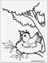 Bird Coloring Pages Realistic For Coloring Book Bird Printable