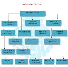 Methodist Hospital Organizational Chart Management Structure Methodist Church In Kenya