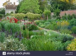 The Kitchen Garden Herbaceous Borders In The Kitchen Garden With Papaver Orientale