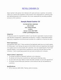 Retail Manager Resume Example Retail Resume Examples Retail Manager Resume Examples 22 Samples