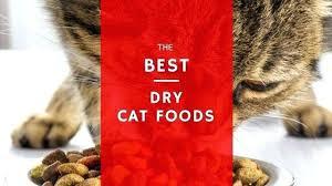 best food for diabetic cat. Best Cat Food For Diabetic Cats Dry Foods